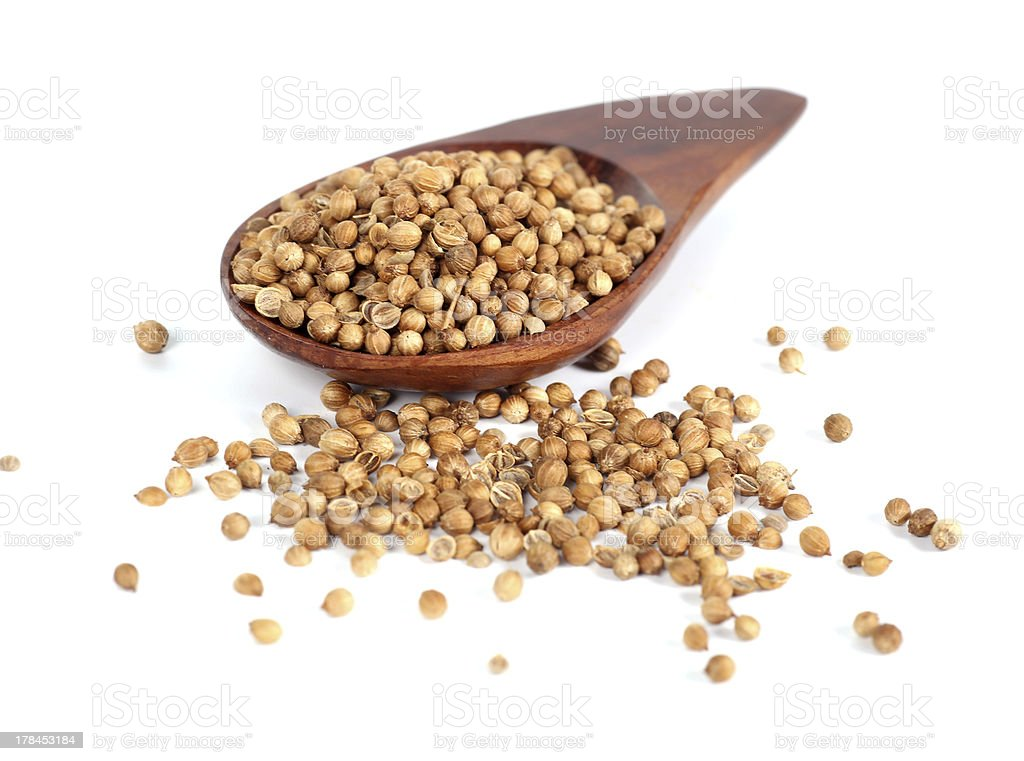 Coriander on wooden spoon royalty-free stock photo