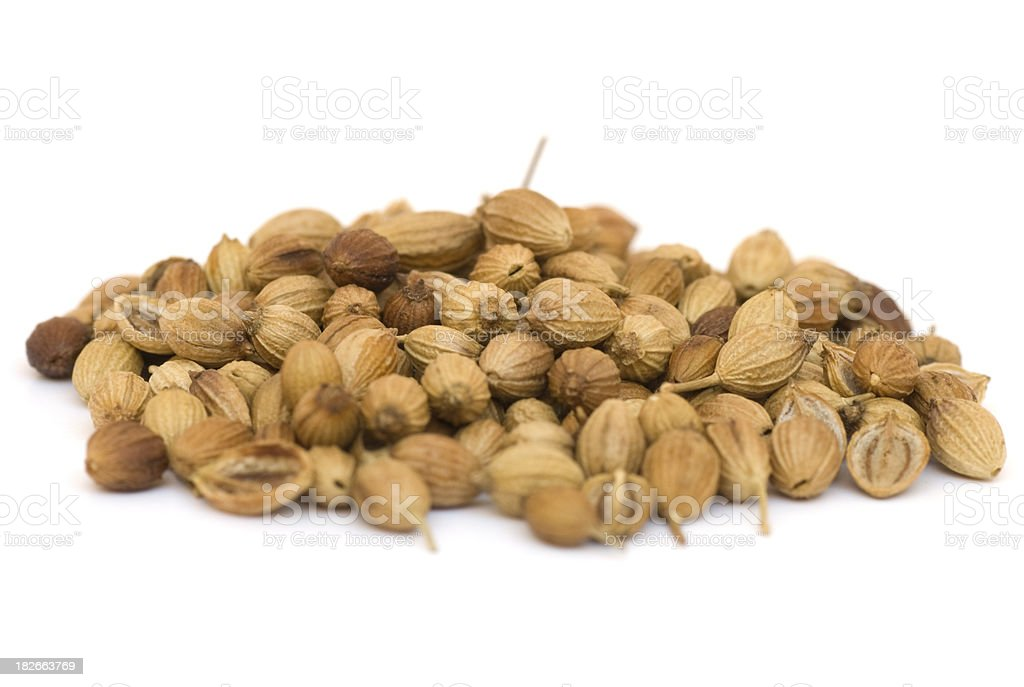 Coriander seed, isolated royalty-free stock photo