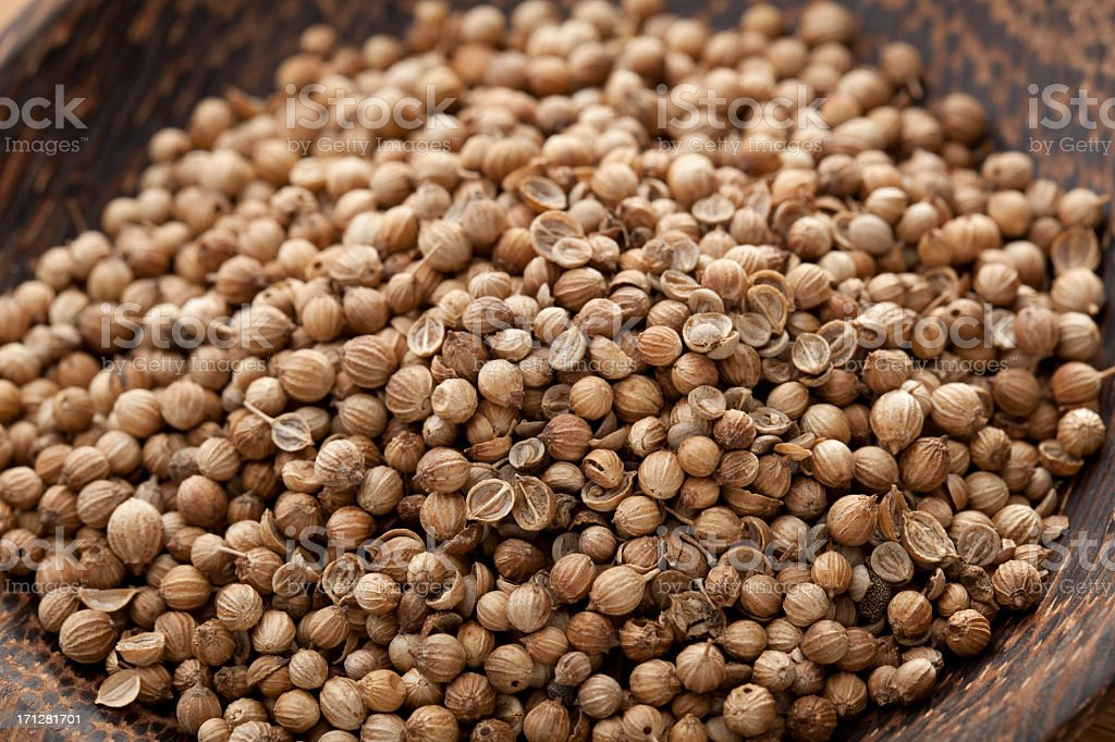 Coriander Seed stock photo