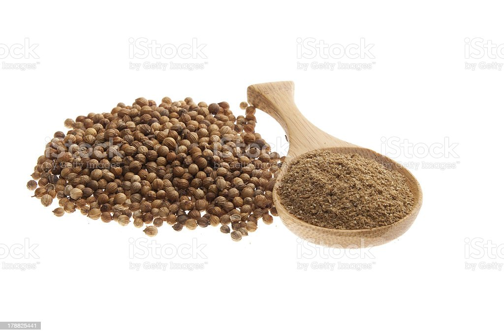 Coriander seeds and powder on a wooden spoon royalty-free stock photo
