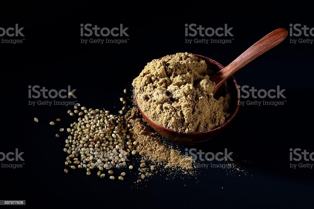 Coriander seeds and Powder stock photo