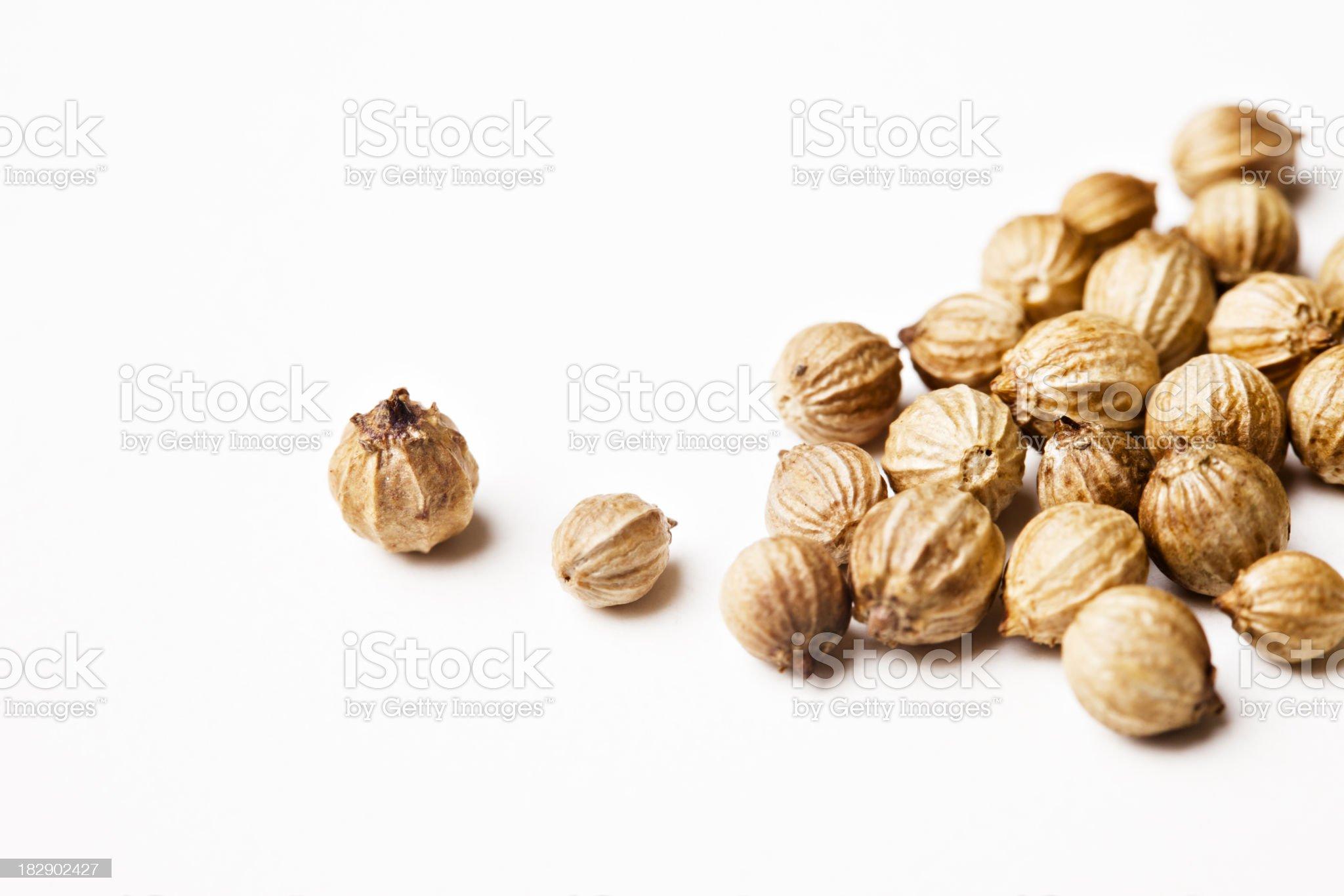 Coriander seeds close-up royalty-free stock photo
