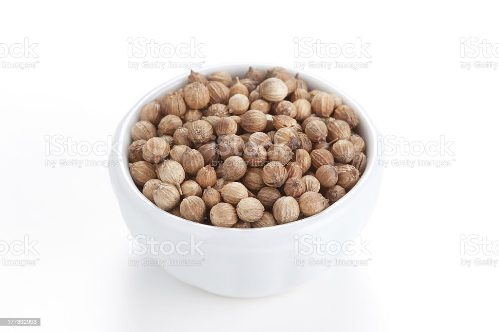 Coriander Seeds (Coriandrum sativum) in a white bowl royalty-free stock photo