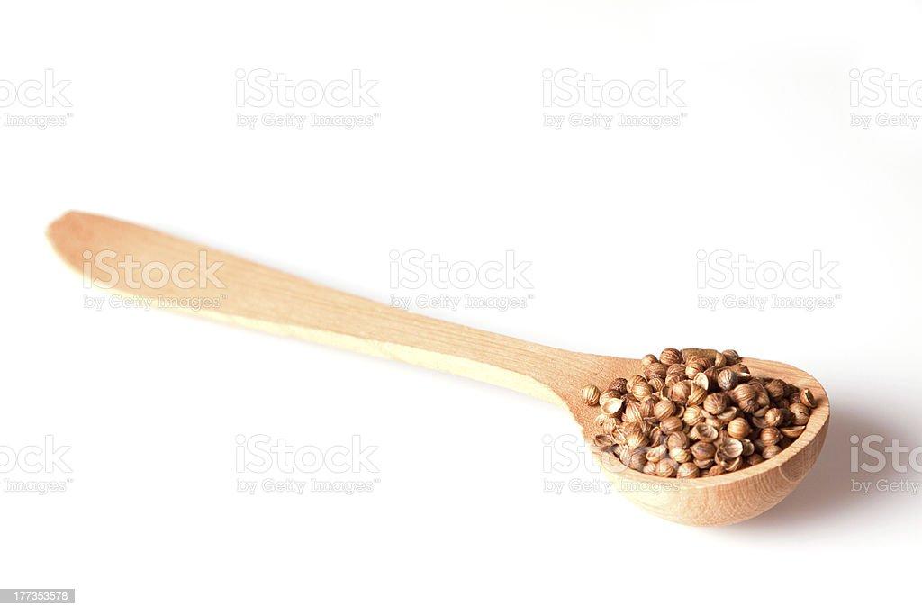 Coriander Seeds royalty-free stock photo