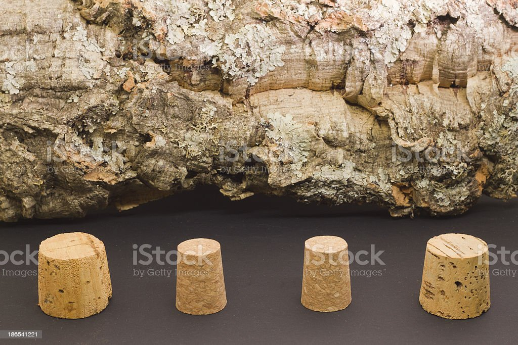 Cork caps and Oak tree bark stock photo
