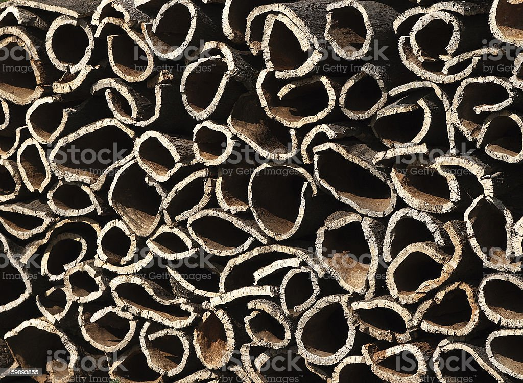 Cork oak bark, Alentejo, Portugal. stock photo