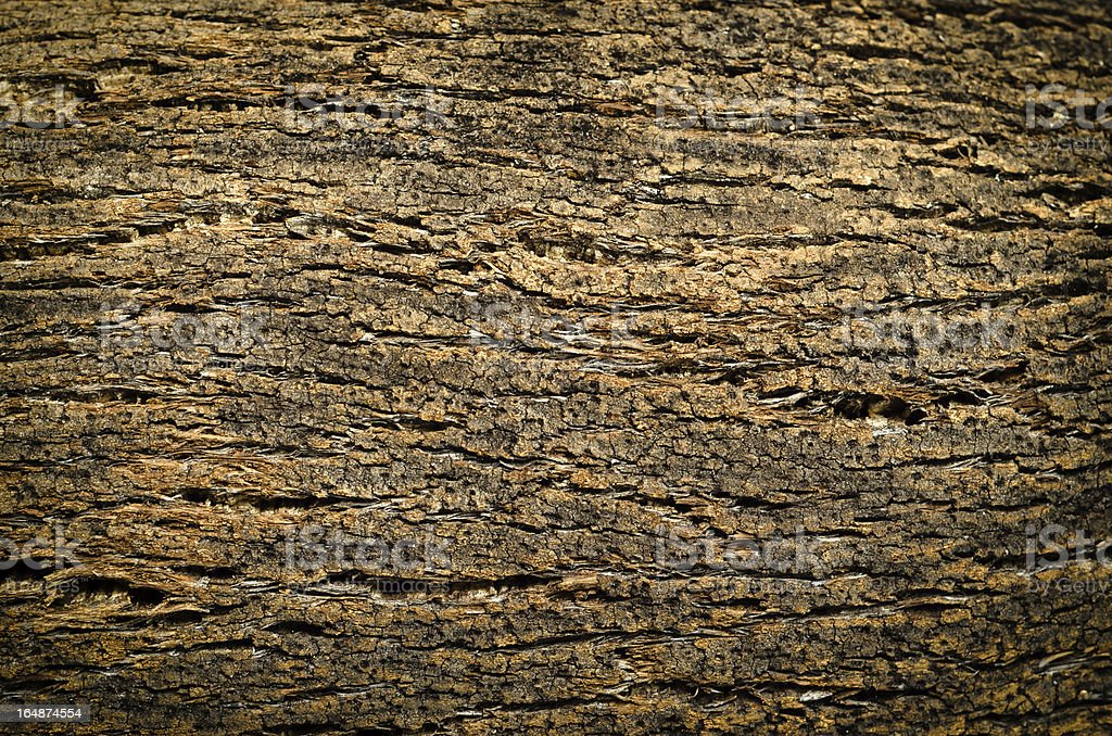Cork royalty-free stock photo
