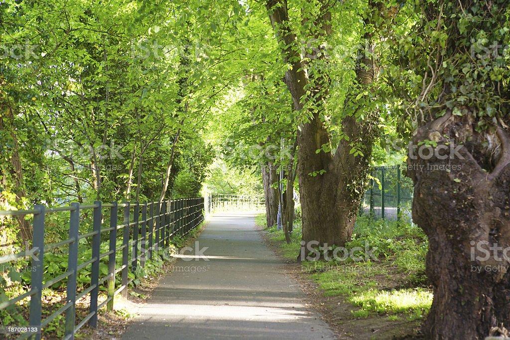 Cork walk way royalty-free stock photo