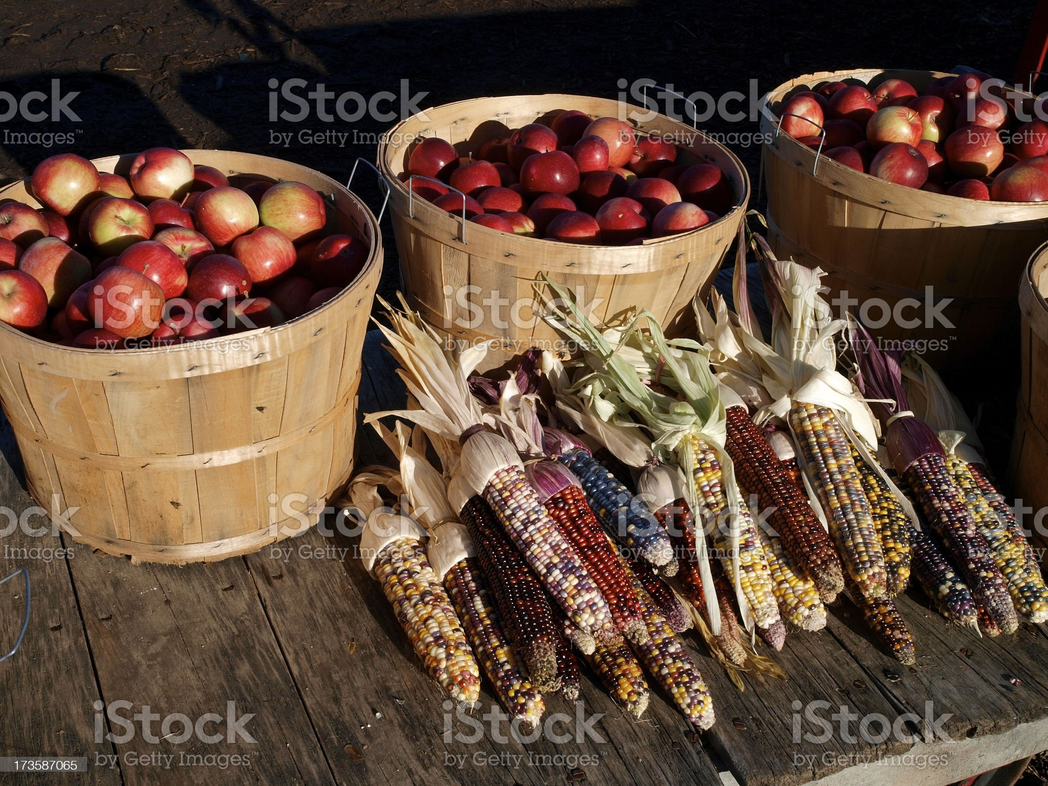 Corn and Apples wide royalty-free stock photo
