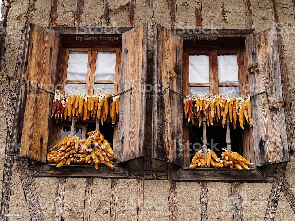 corn and window royalty-free stock photo