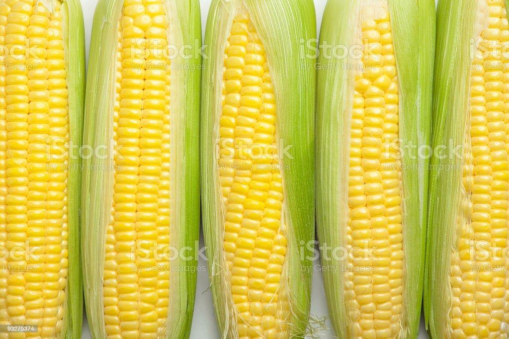 Corn Background royalty-free stock photo