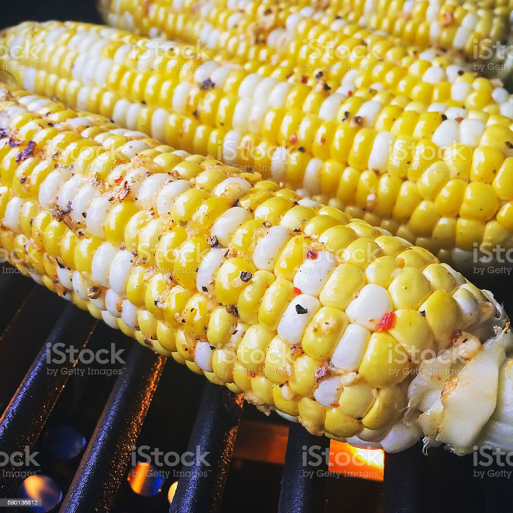 Corn BBQ grilling with spices stock photo