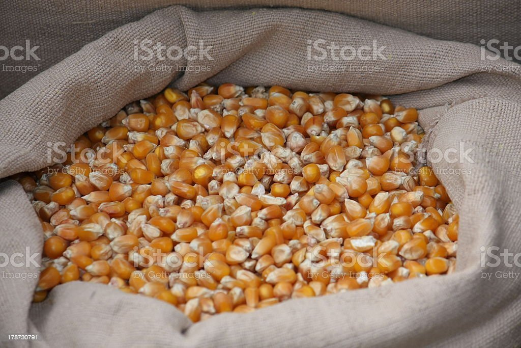 corn buckets in a jute bag for sale at market royalty-free stock photo