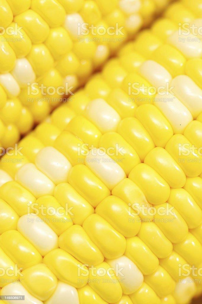 Corn close-up. royalty-free stock photo
