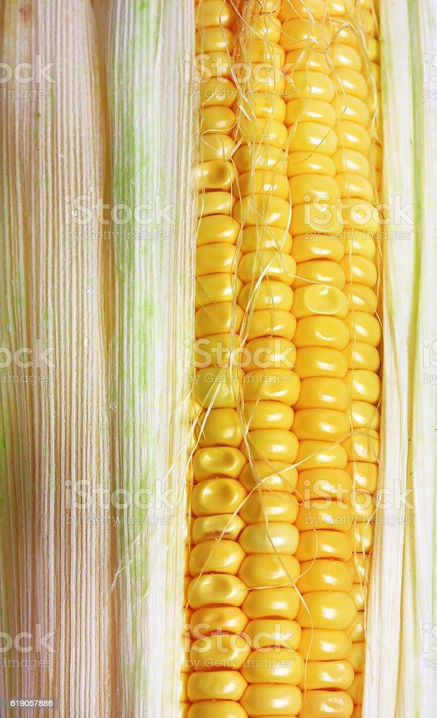 Corn closeup top view stock photo