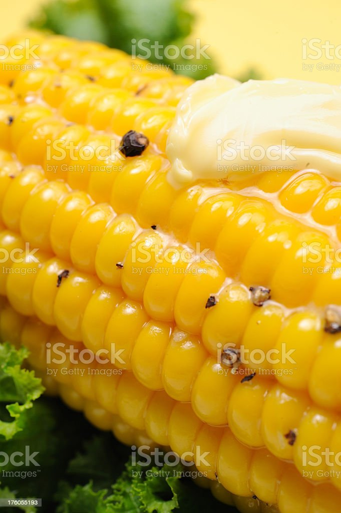 Corn Cob Meal royalty-free stock photo