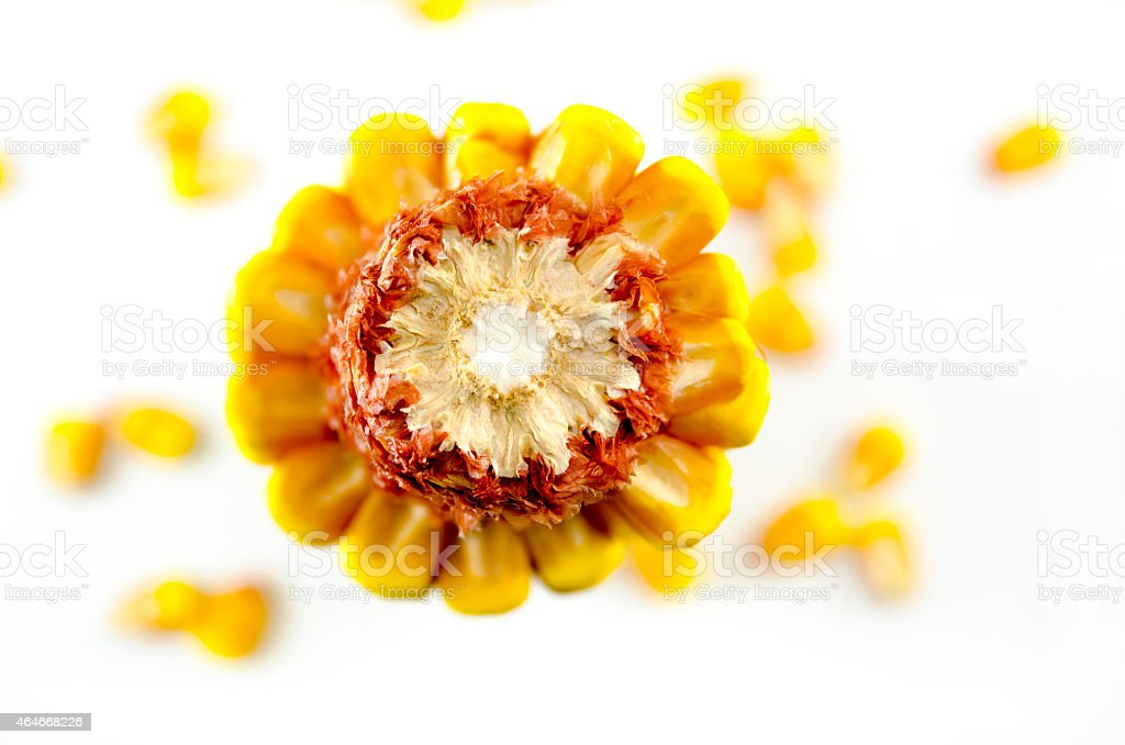 Corn cob taken from above, isolated royalty-free stock photo