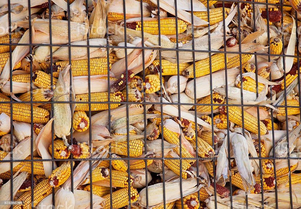Corn Crib stock photo