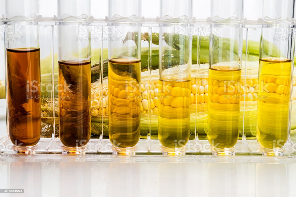 Corn derived ethanol biofuel with test tubes on white background stock photo