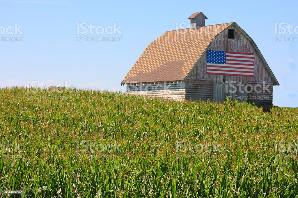Corn, Flag Paint a Rustic Picture in Rural Iowa stock photo