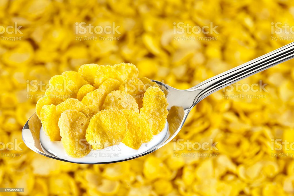 Corn Flakes Cereal  with Milk on Spoon royalty-free stock photo