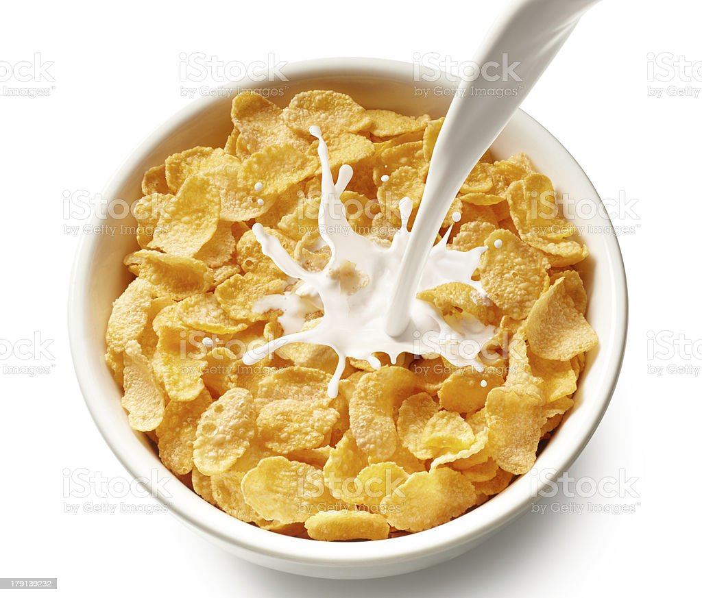 corn flakes with milk stock photo