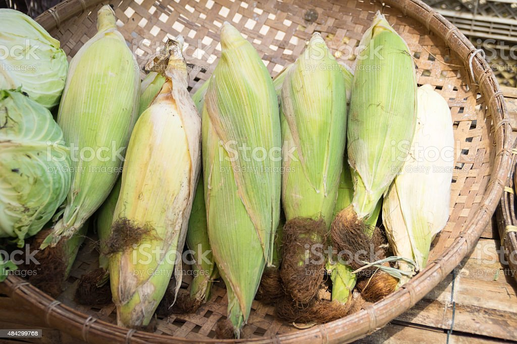 Corn from the garden stock photo