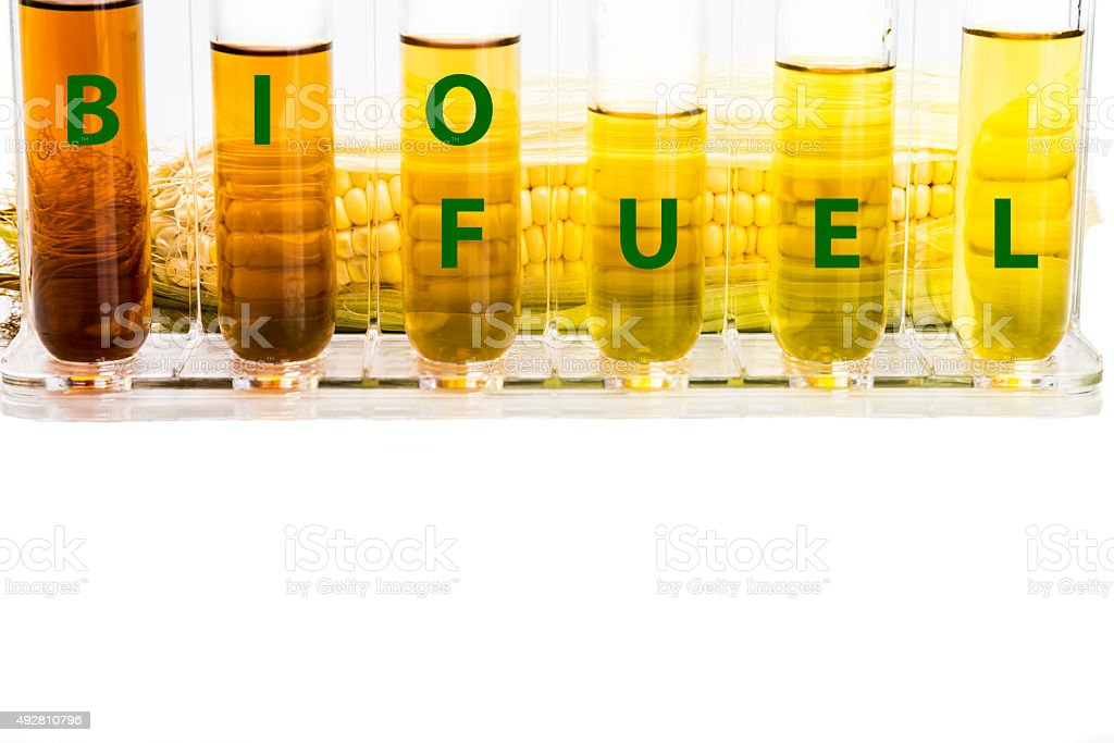 Corn generated ethanol in test tubes with BIOFUEL word stock photo