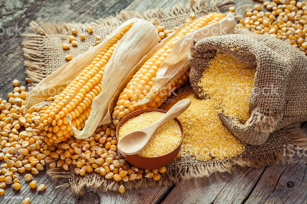Corn groats and seeds, corncobs on wooden rustic table. stock photo