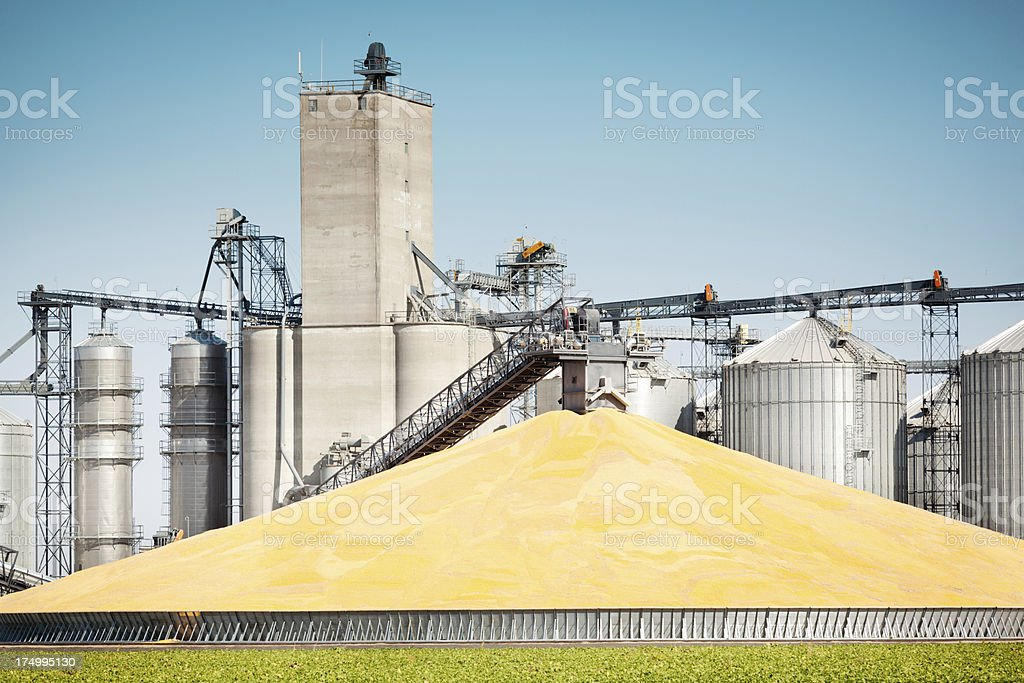 Corn Harvest Processing Plant and Silos in Autumn Hz stock photo