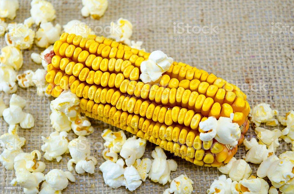 Corn maize and popcorns royalty-free stock photo