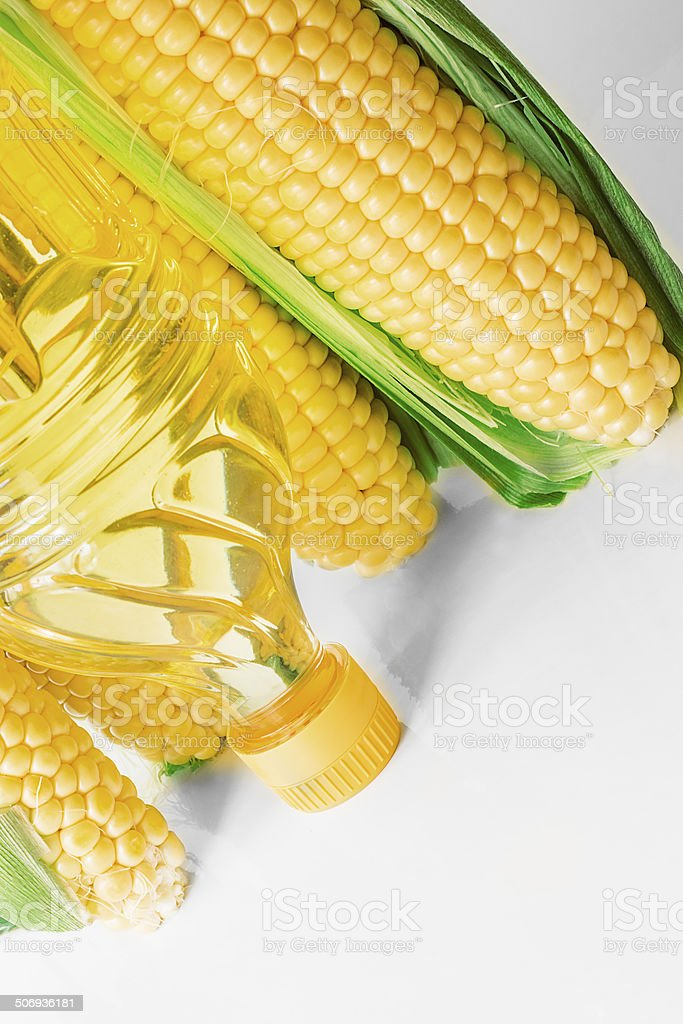 corn oil stock photo