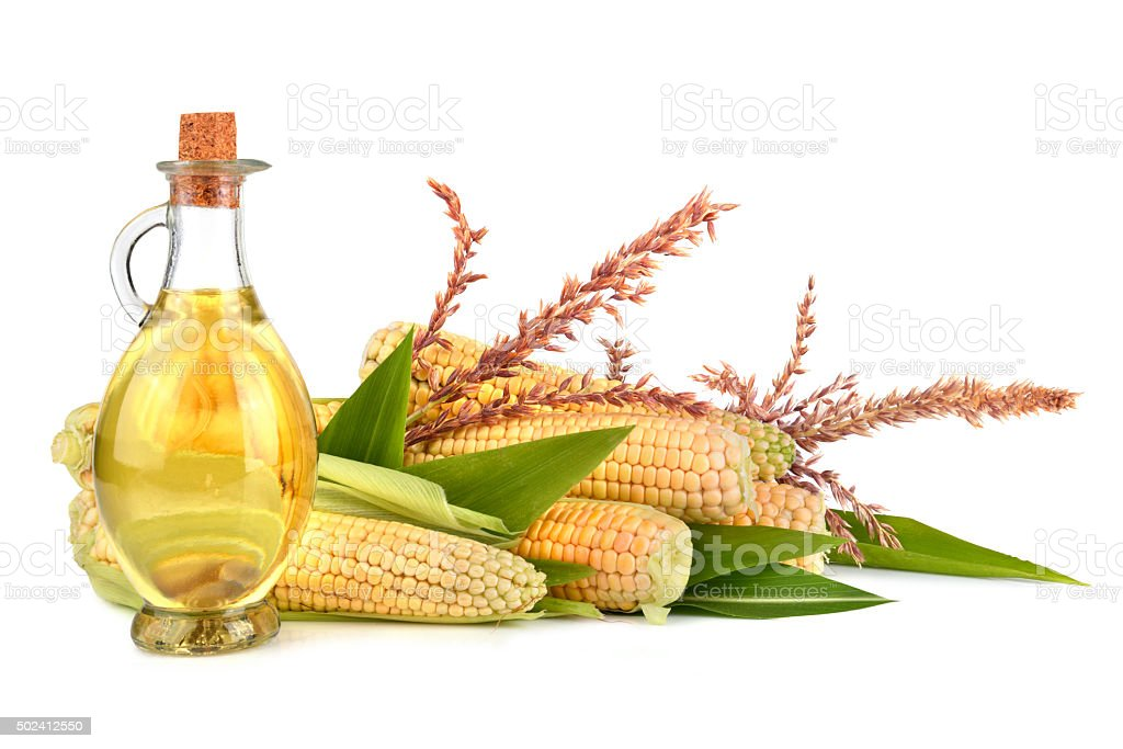 Corn oil with cobs stock photo
