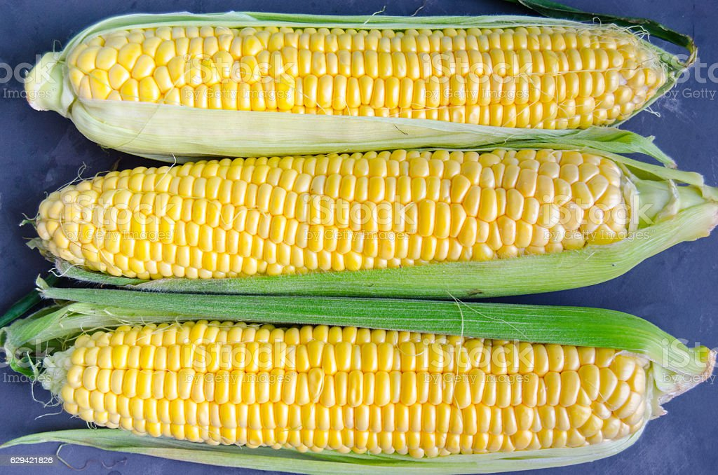 Corn on a dark background stock photo