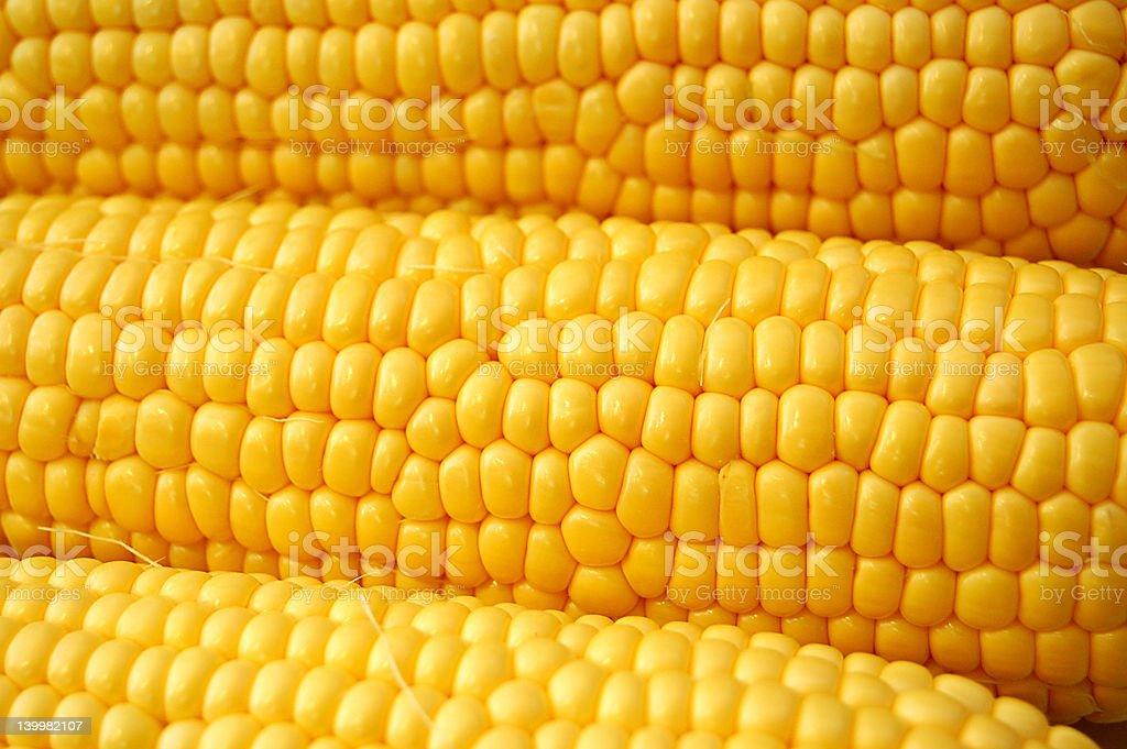 Corn on Cobb stock photo