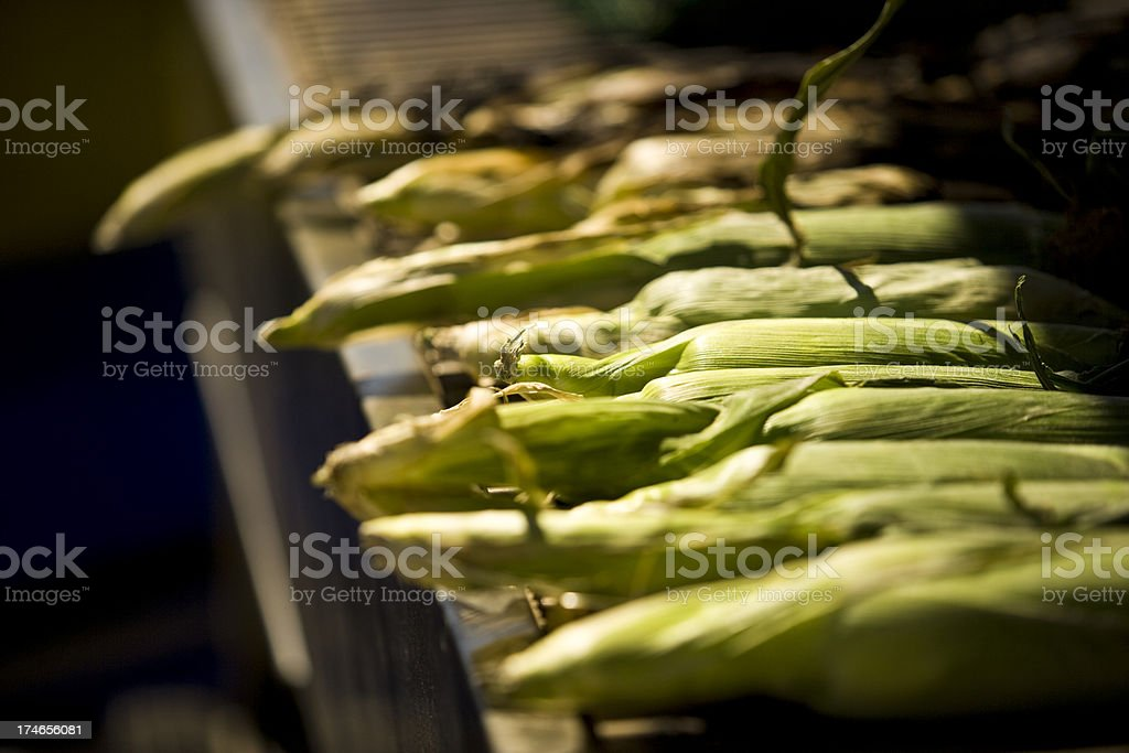 Corn on the barbeque royalty-free stock photo