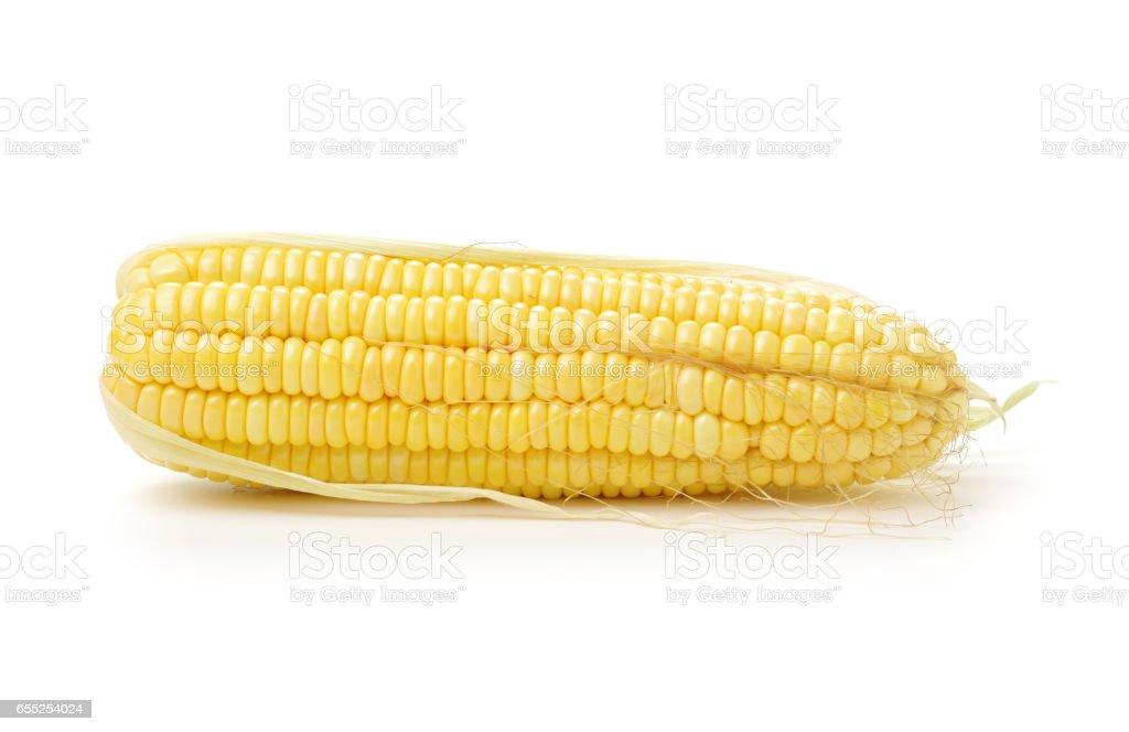 Corn on the cob kernels peeled isolated on white background stock photo