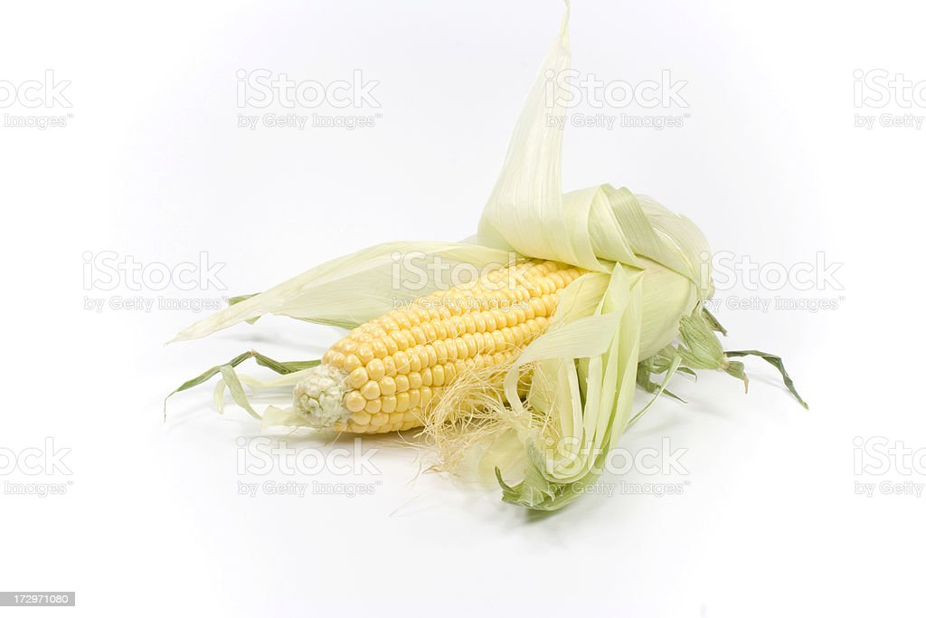 corn on the cob royalty-free stock photo