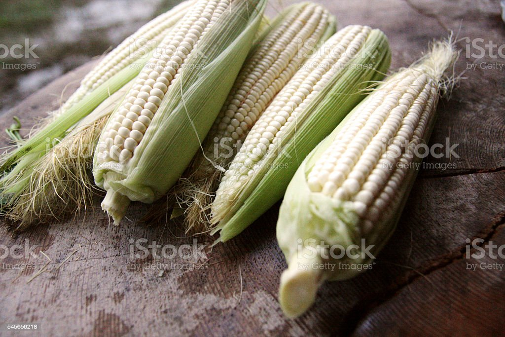 corn on wood table stock photo