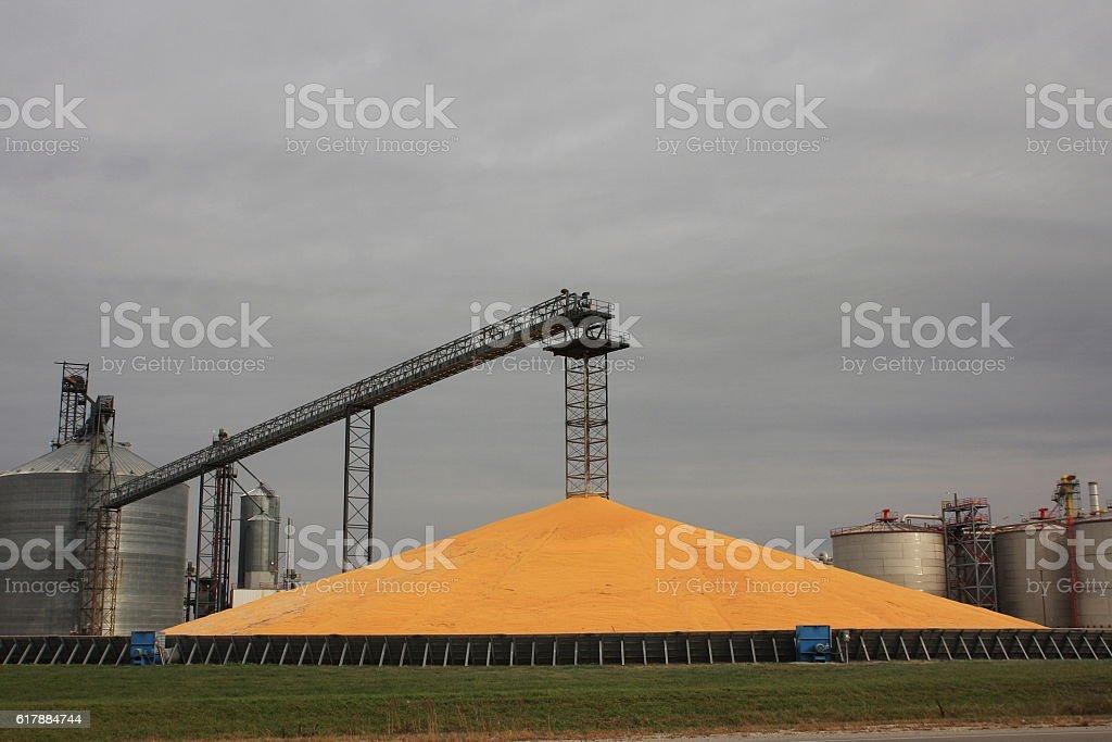 Corn Pile and Grain Bins at Iowa Ethanol Plant stock photo
