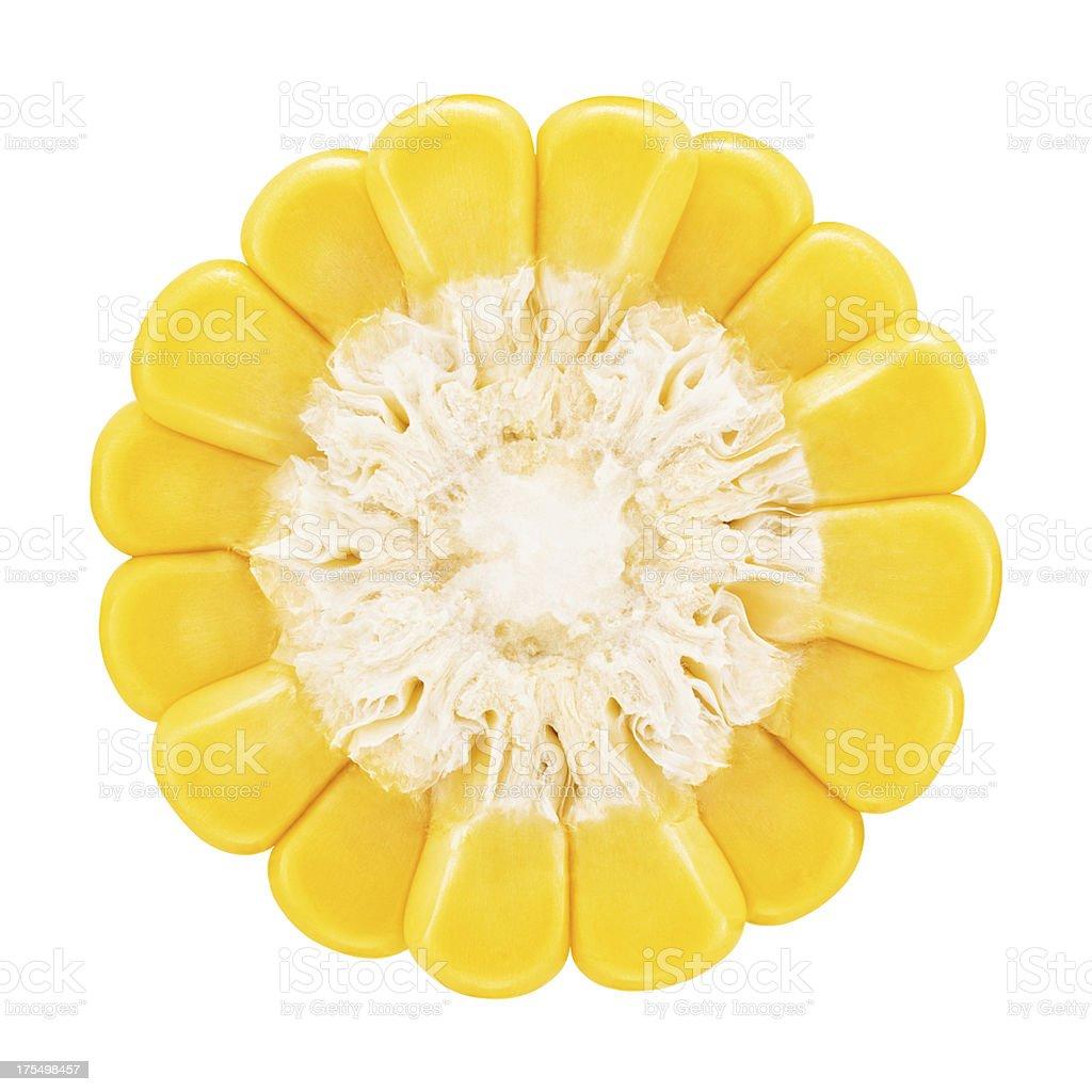 Corn portion on white stock photo