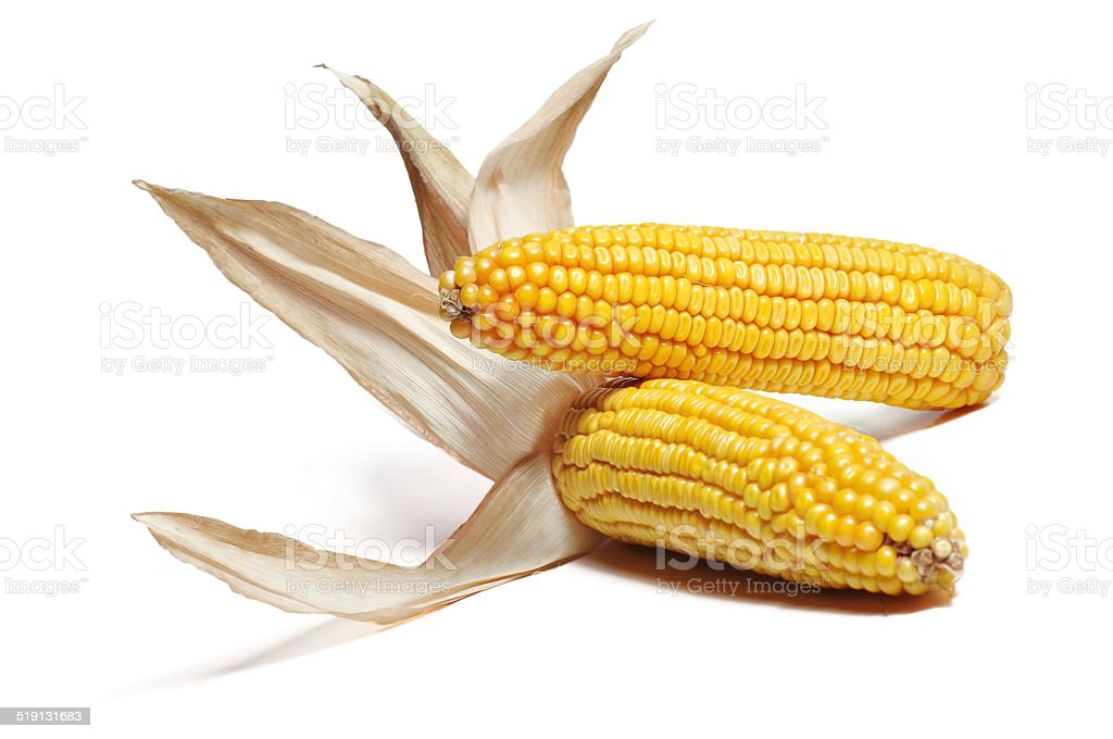 corncob detail stock photo