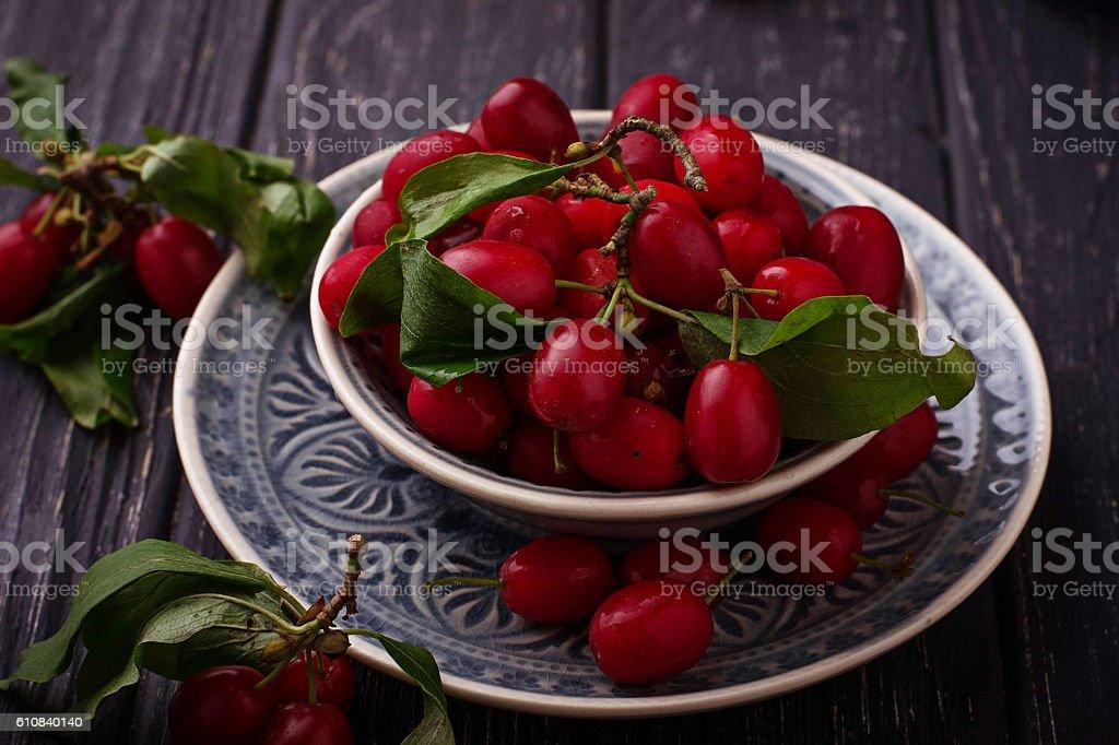 Cornel or dogwood berry stock photo