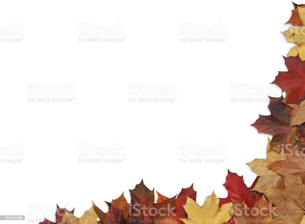Corner Border of Autumn Leaves royalty-free stock photo