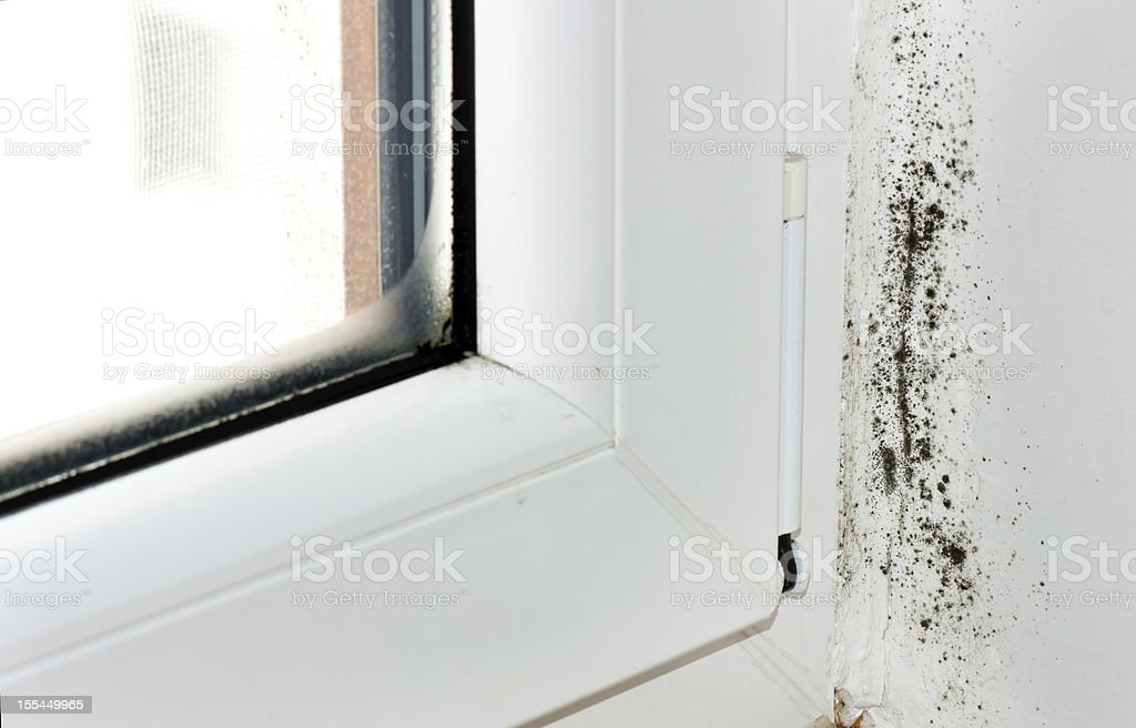 Corner by a window with black mold spores stock photo