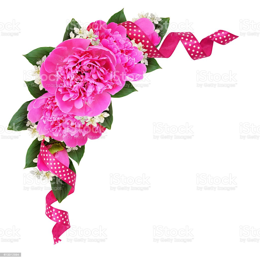 Corner decoration with pink peony flowers and silk spotted ribbo stock photo