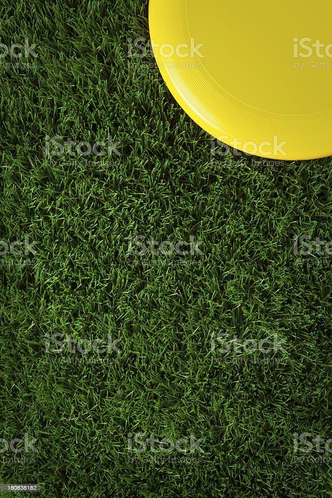 Corner Frisbee on Green Grass stock photo