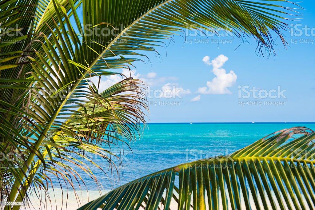 Corner of paradise stock photo