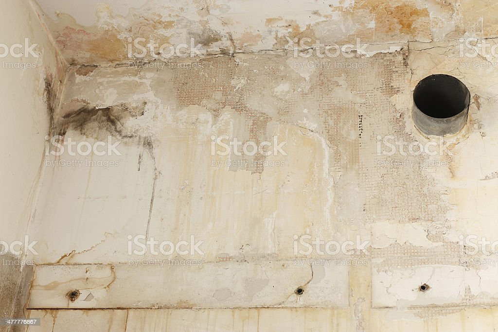 Corner wall with stains and mold royalty-free stock photo