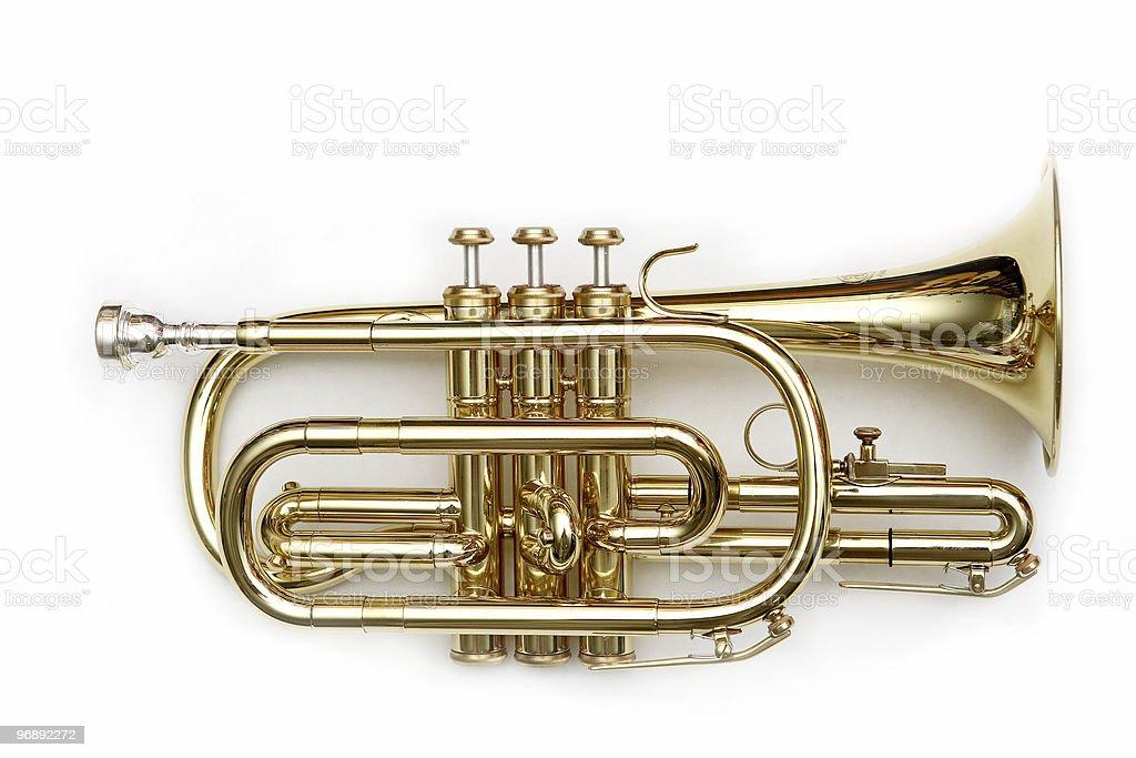 cornet isolated over white stock photo